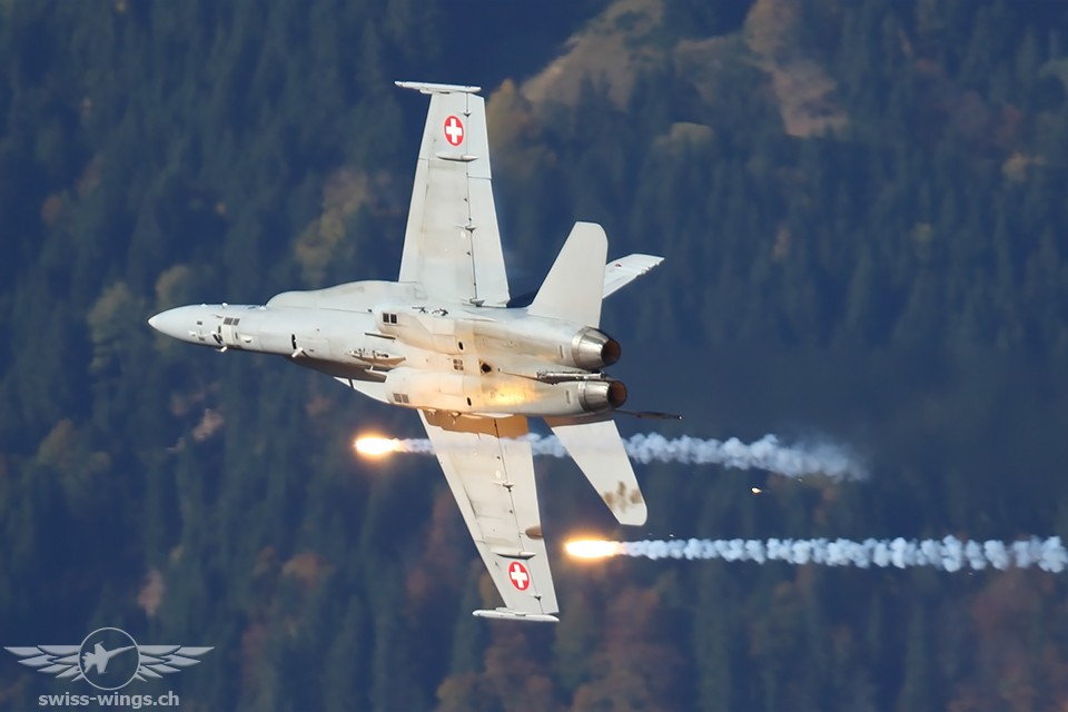 Swiss Hornet Display Team